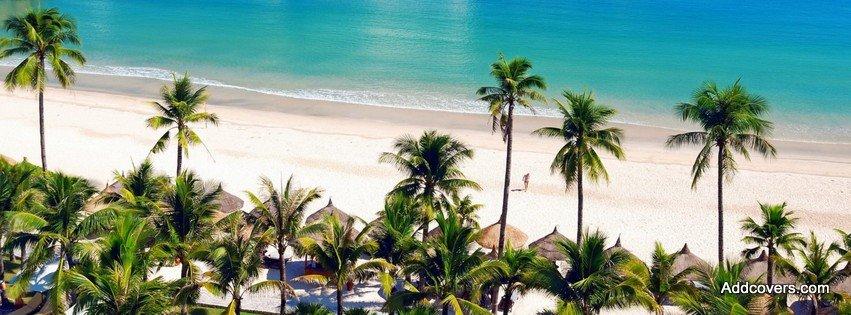 Vietnam Beaches Nature Beach in Vietnam {scenic