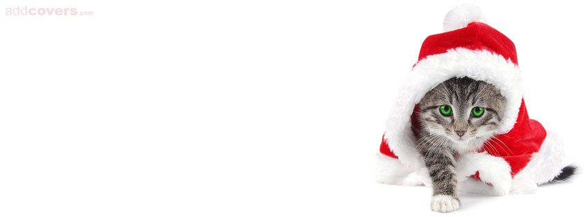 Kitty Santa {Holidays Facebook Timeline Cover Picture, Holidays Facebook Timeline image free, Holidays Facebook Timeline Banner}