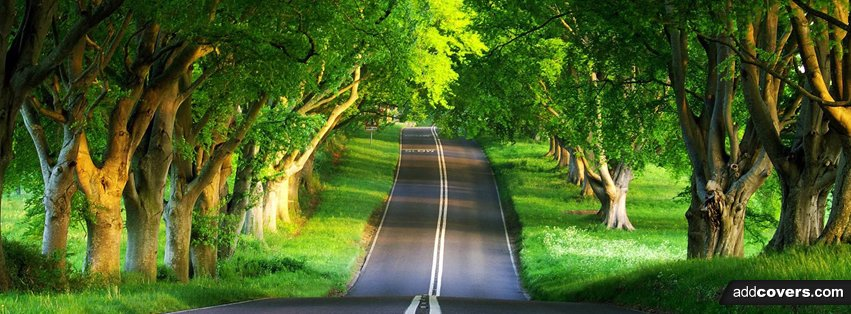 summer road  {Scenic & Nature Facebook Timeline Cover Picture, Scenic & Nature Facebook Timeline image free, Scenic & Nature Facebook Timeline Banner}