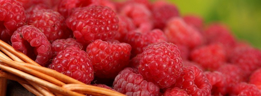 Fresh raspberry food candy facebook timeline cover picture food