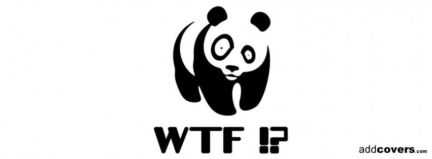 funny panda facebook timeline - photo #1