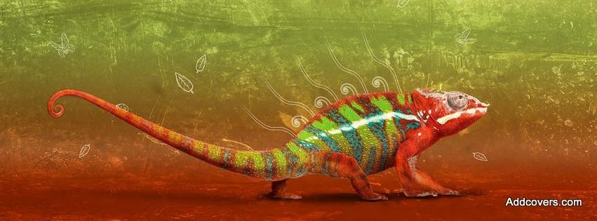Chameleon {Animals Facebook Timeline Cover Picture, Animals Facebook Timeline image free, Animals Facebook Timeline Banner}