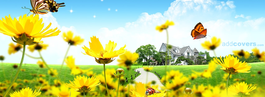 Yellow Flowers Facebook Covers