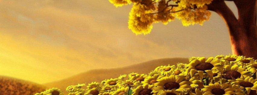 Field of Sunflowers {Flowers Facebook Timeline Cover Picture, Flowers Facebook Timeline image free, Flowers Facebook Timeline Banner}