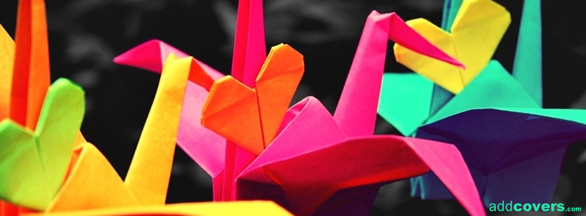 Time to fly origami Facebook Covers