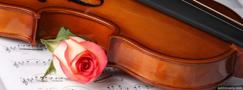 Violin and Rose {Music Instruments Facebook Timeline Cover Picture, Music Instruments Facebook Timeline image free, Music Instruments Facebook Timeline Banner}