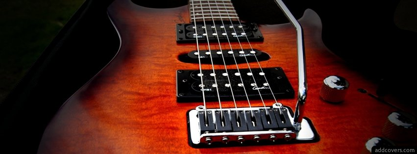 Godin Guitar Facebook Covers